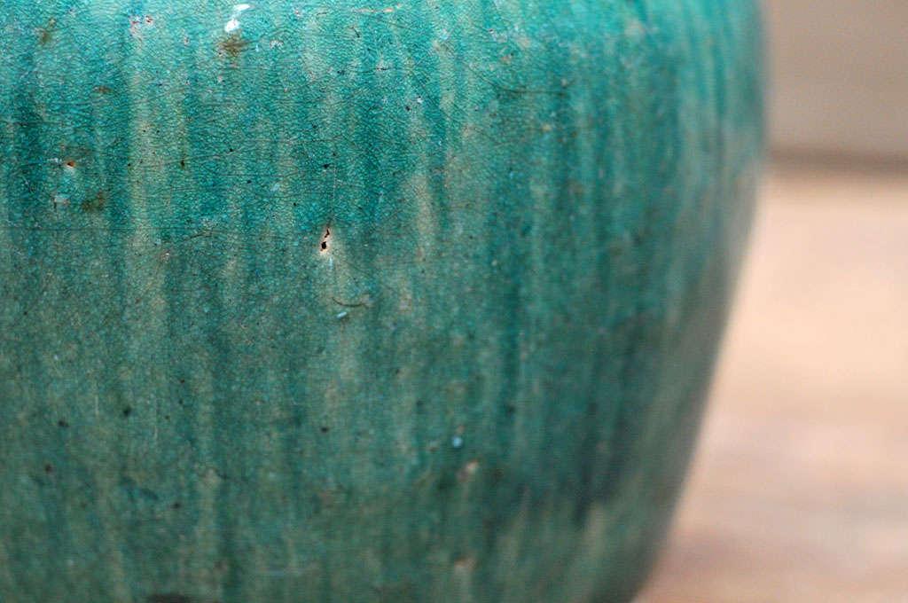 Qing Dynasty Tea Pot 4