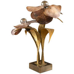 Unique Willy Daro Bronze Shell Lamp