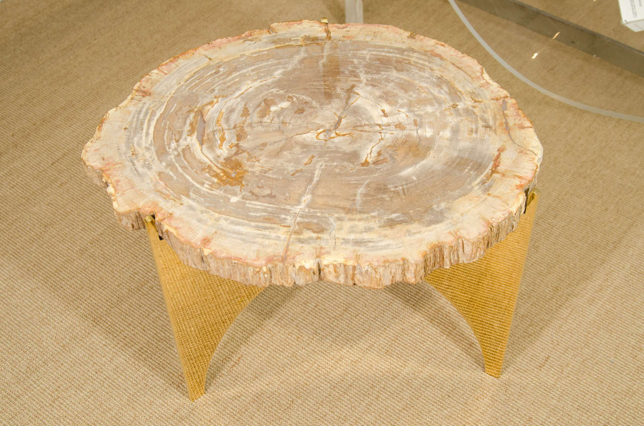 A Petrified Wood and Bronze Occasional Table 2