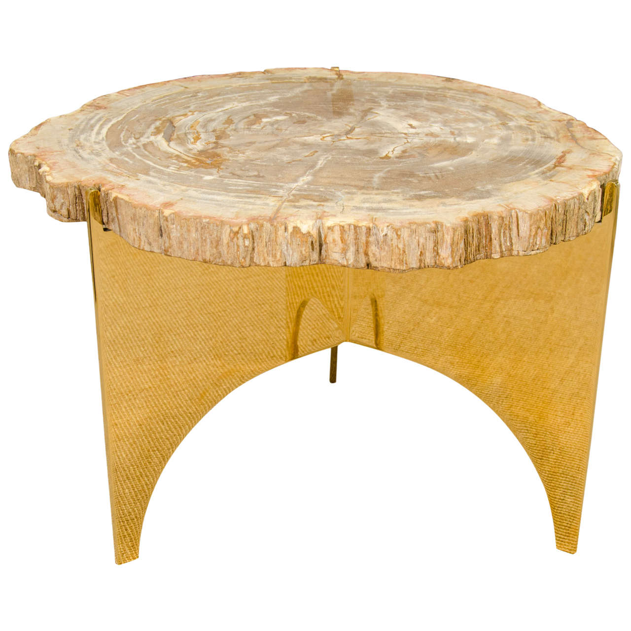 A Petrified Wood and Bronze Occasional Table 1