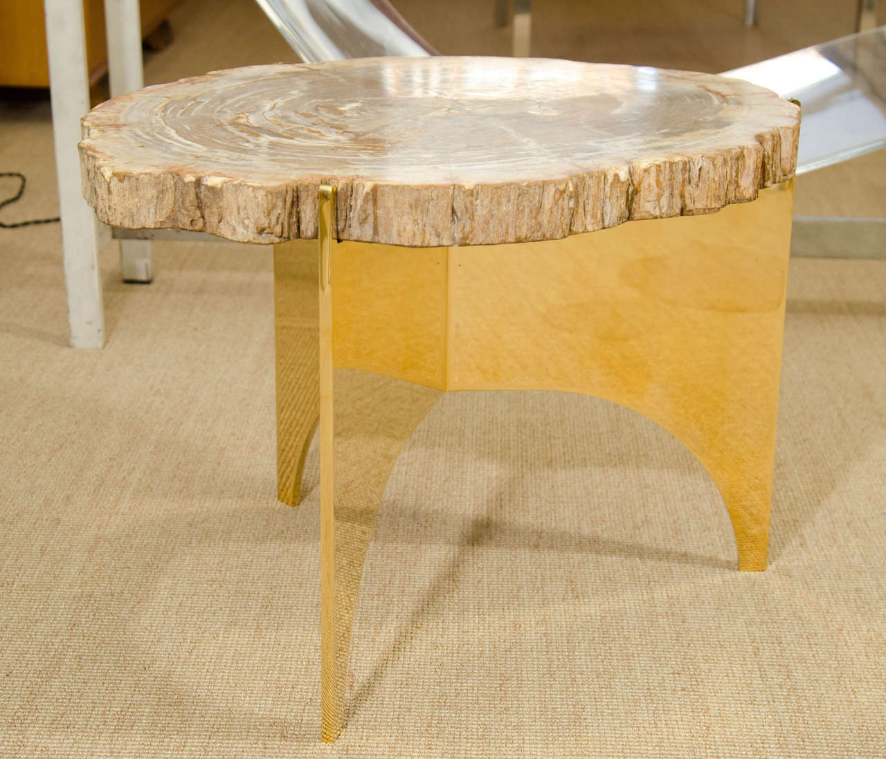 A Petrified Wood and Bronze Occasional Table 5