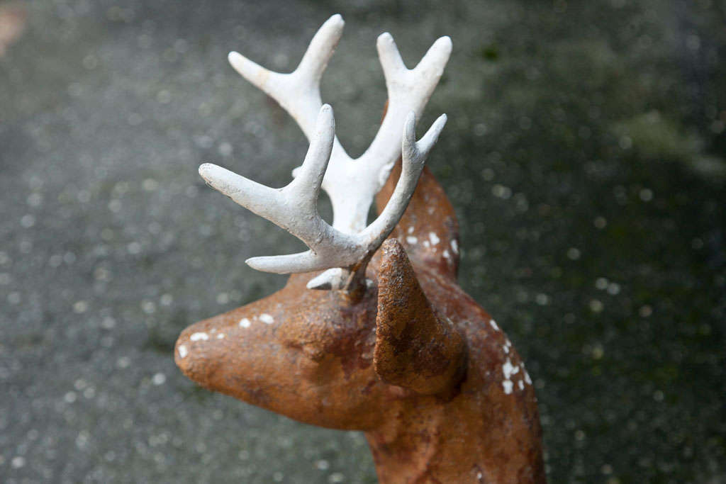 Cast Iron Deer For Sale 3
