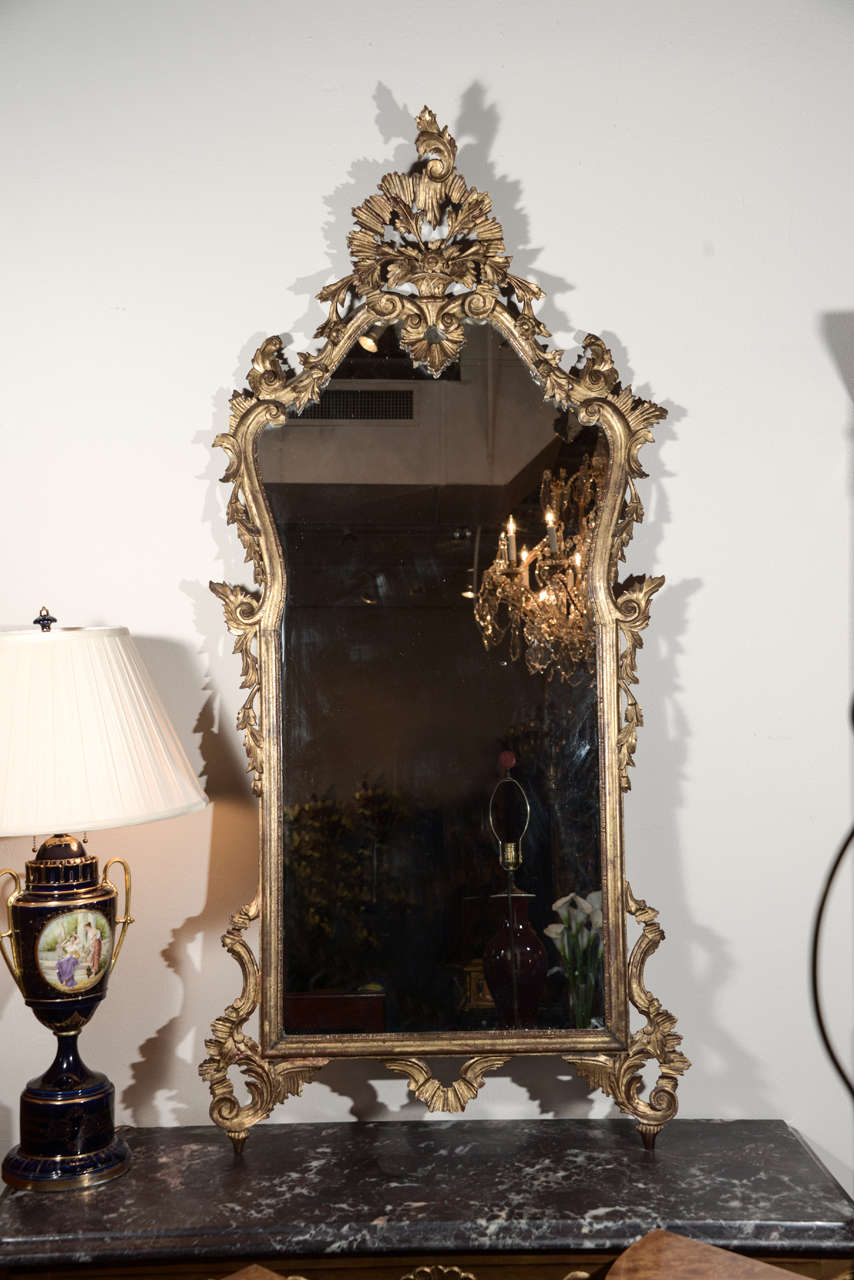 Late 19th c Italian Louis XV gilt wood carved mirrors 2
