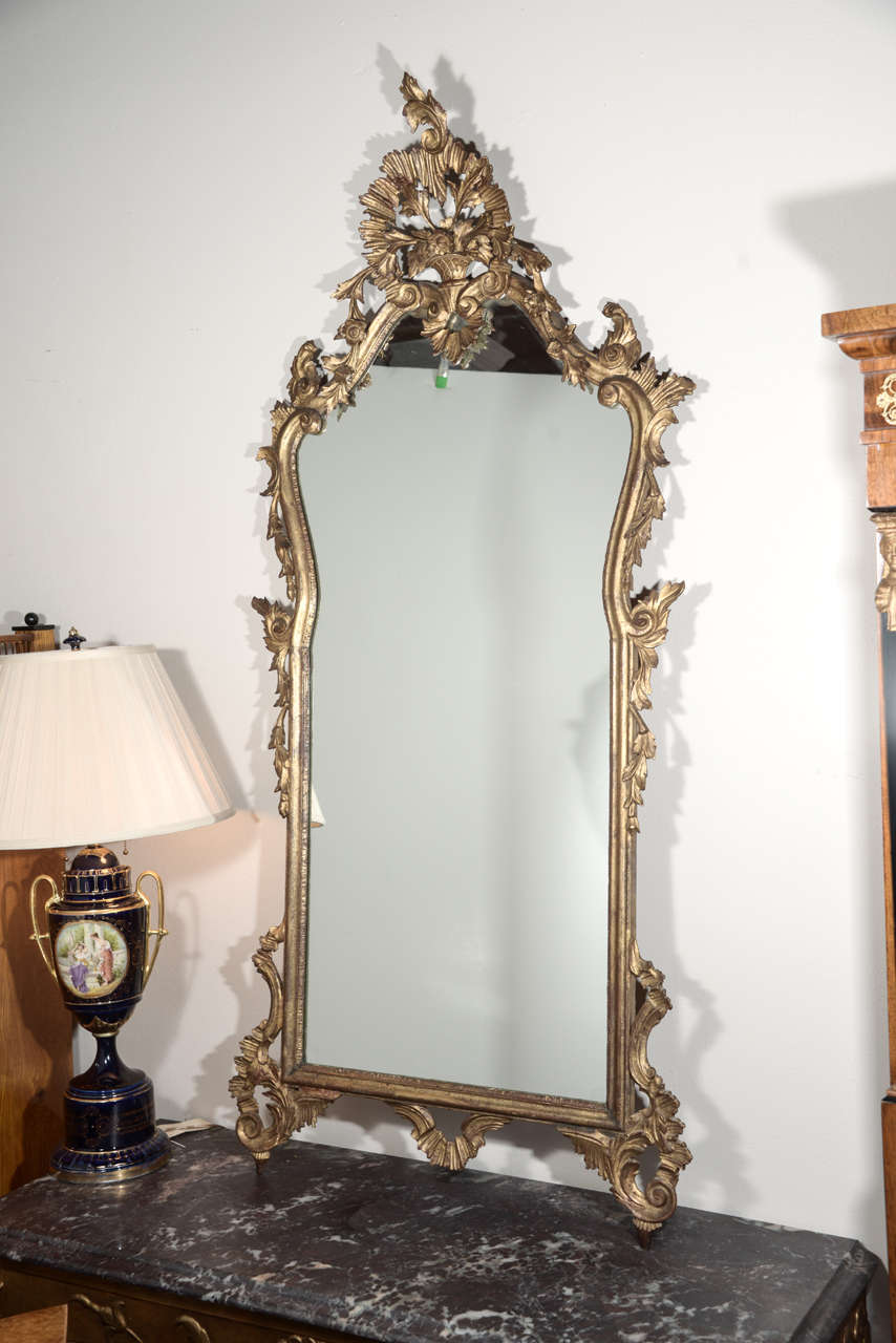 Late 19th c Italian Louis XV gilt wood carved mirrors 3