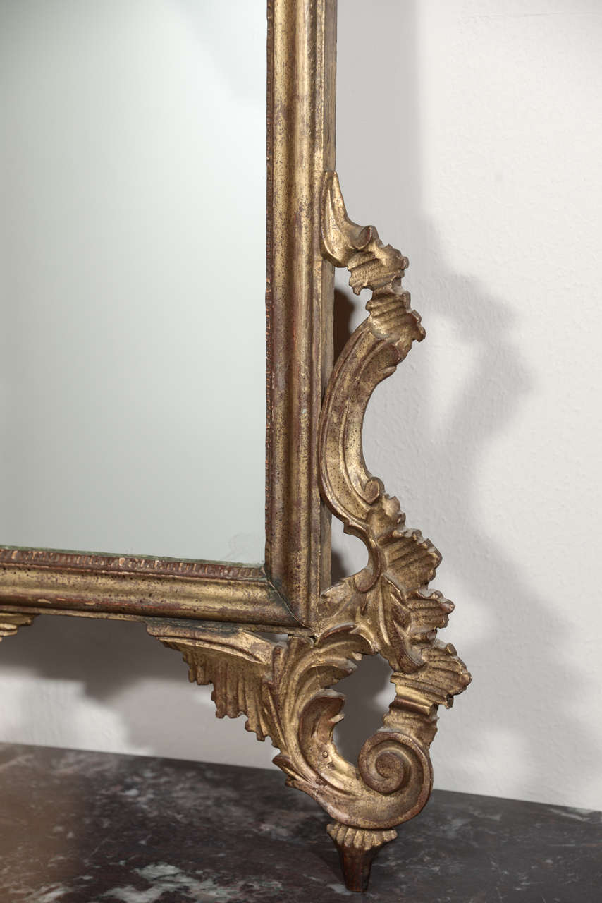 Late 19th c Italian Louis XV gilt wood carved mirrors 7