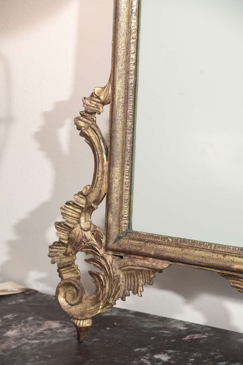 Late 19th c Italian Louis XV gilt wood carved mirrors 8