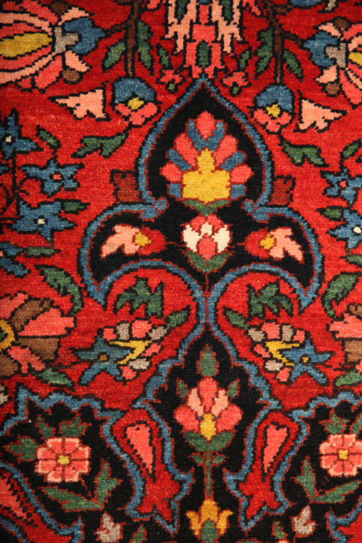 1920 Bibibaft Bakhtiari Carpet with Pure Wool Pile and Organic Vegetal Dyes For Sale 3