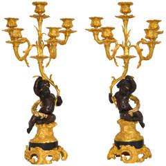 Gorgeous Pair of Bronze Candelabras Louis XV Style