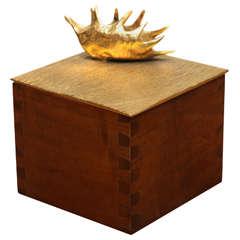"""Aldus, """"Dionaea"""" Box, Italy, 2013"""