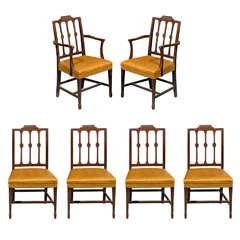 Set of 6 Hepplewhite Dining Chairs of Mahogany