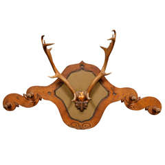 Victorian Carved Oak and Dear Horn Coat/Hat Rack
