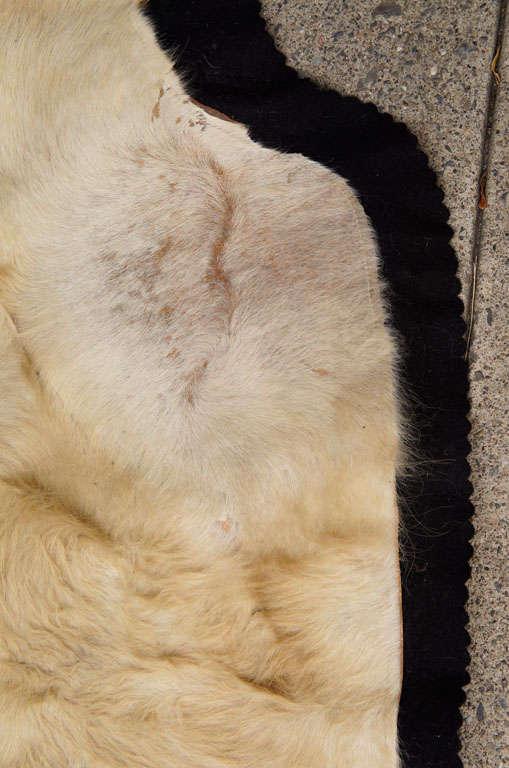 Vintage Long Haired Cowhide Rug At 1stdibs