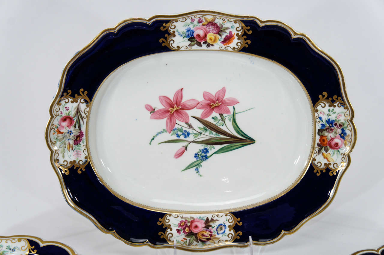 British Chamberlain's Worcester Hand Painted Botanical Serving Pieces For Sale