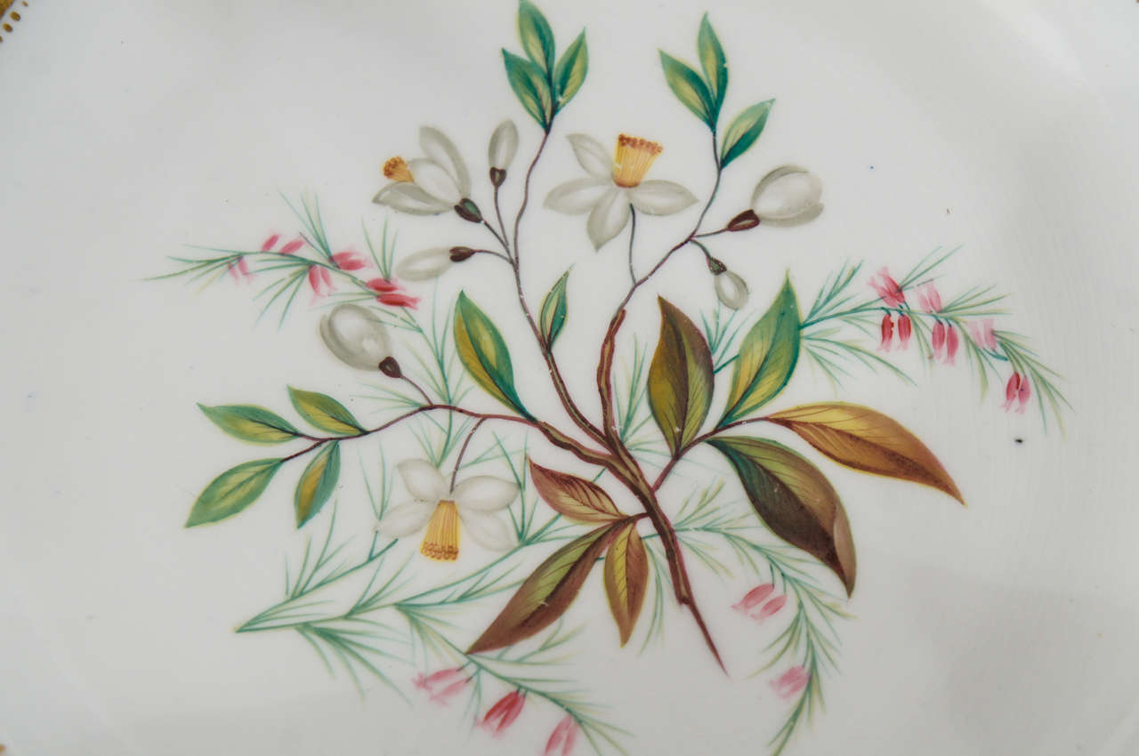 19th Century Chamberlain's Worcester Hand Painted Botanical Serving Pieces For Sale