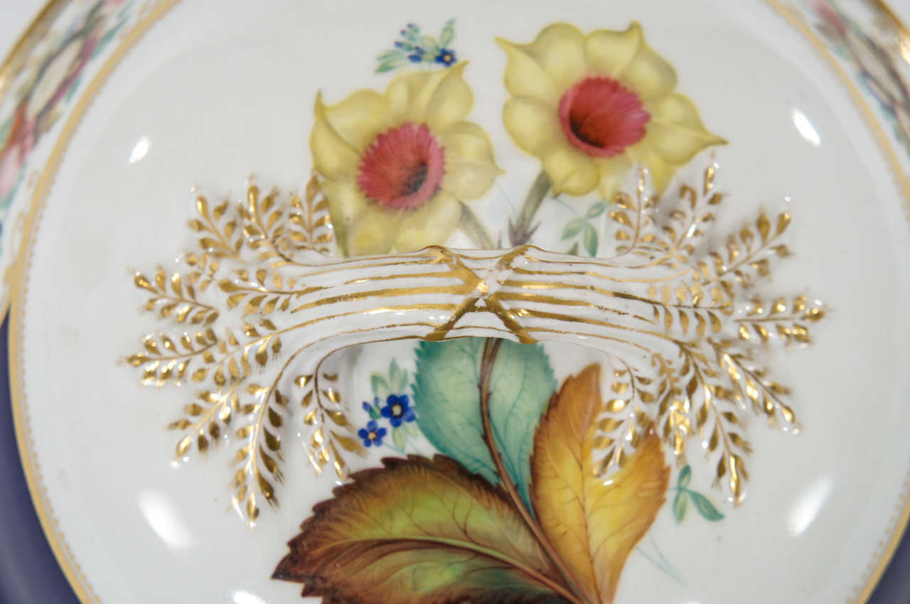 Chamberlain's Worcester Hand Painted Botanical Serving Pieces For Sale 2