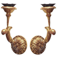 Pair of 19th c Bois Dore Sconces