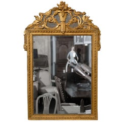 French 19th Century Gilded Carved Mirror with Bird and Rose Motifs