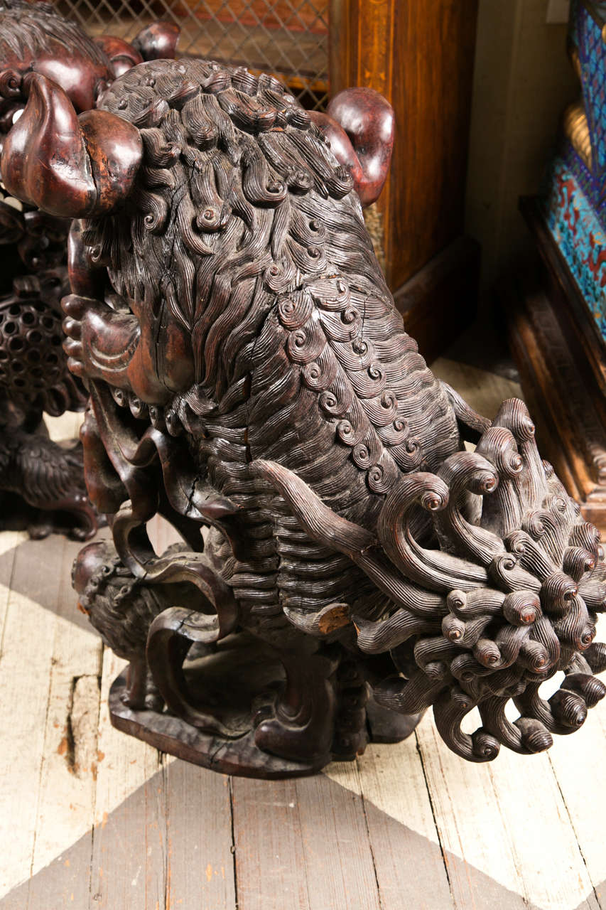 Pair 19th century  Carved Wood Chinese FooDogs 6