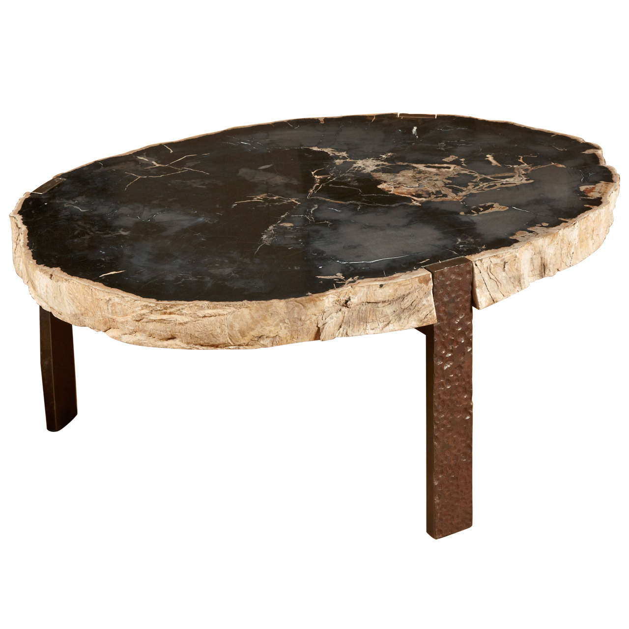oval coffee table with petrified wood top at 1stdibs