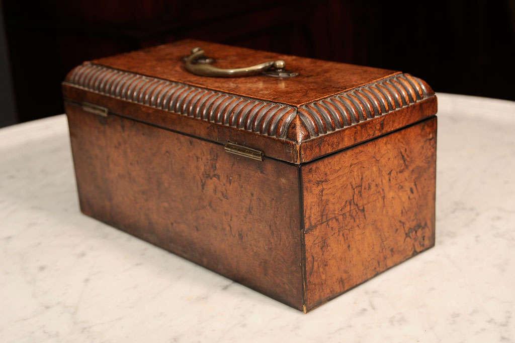 William VI Burr Walnut Tea Caddy 4
