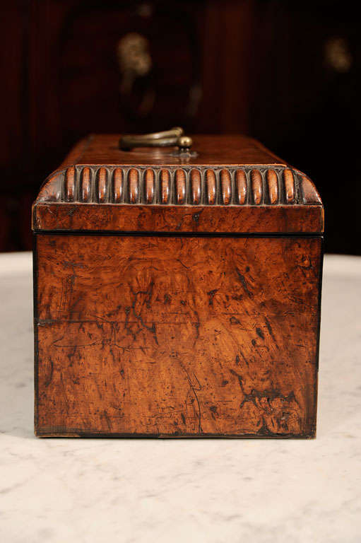 William VI Burr Walnut Tea Caddy 5