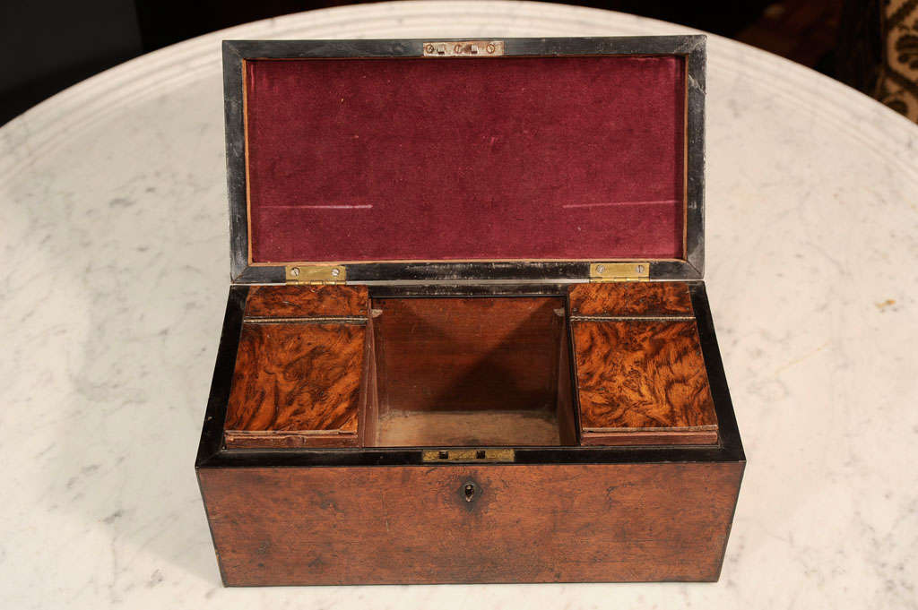 William VI Burr Walnut Tea Caddy 6
