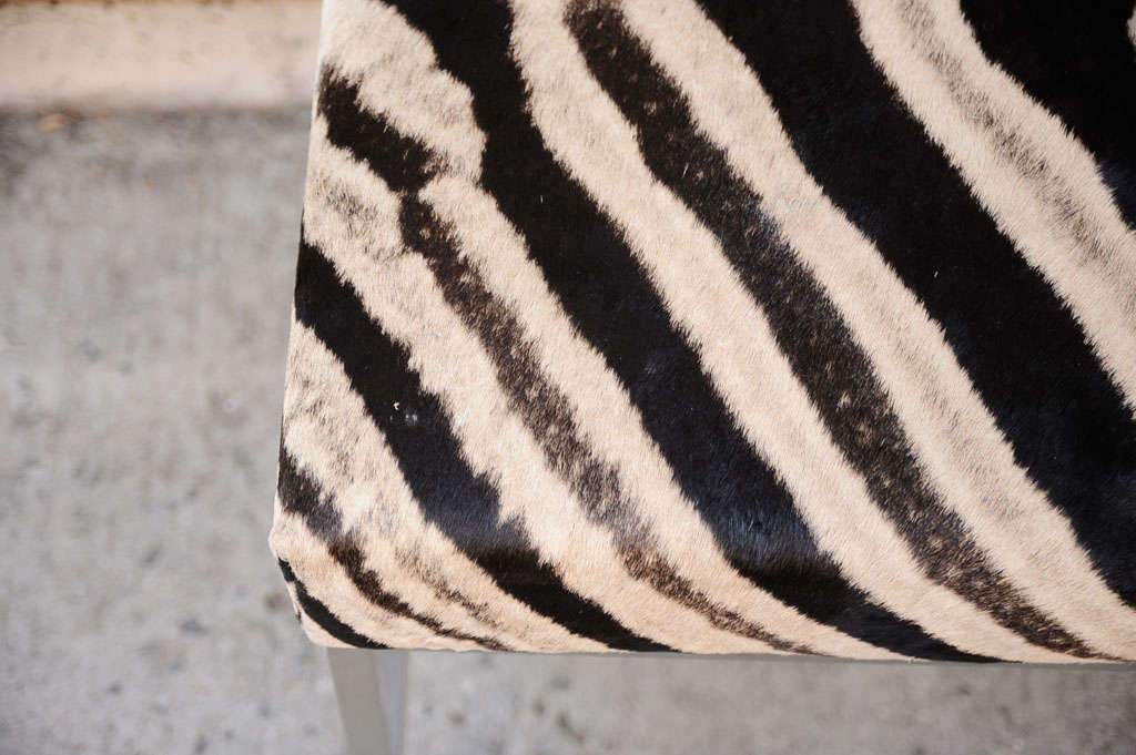 African Zebra Skin Ottoman With Polished Chrome Legs For
