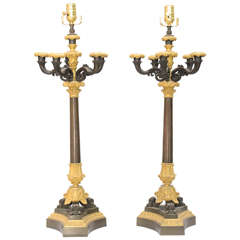 Pair of 19th Century French Bronze Candelabra Lamps