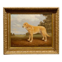English Oil Painting of Sporting Dog Signed by British Artist Stan O'connor