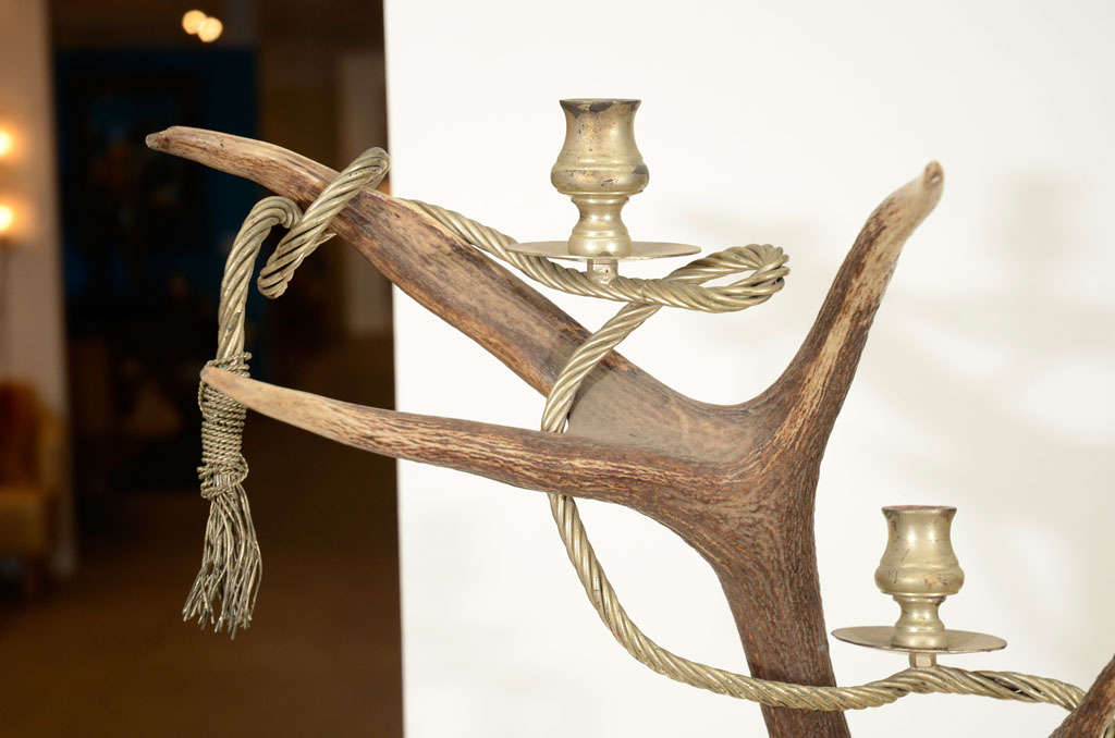 English Antler Candelabra by Anthony Redmile For Sale