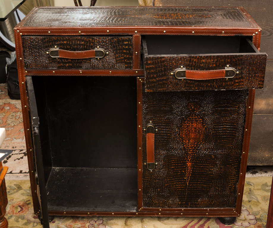 English Vintage Skin Cupboard For Sale