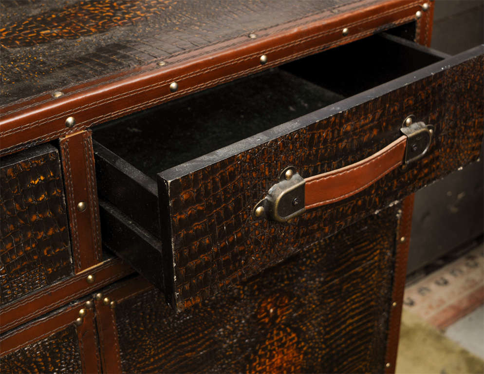Late 20th Century Vintage Skin Cupboard For Sale