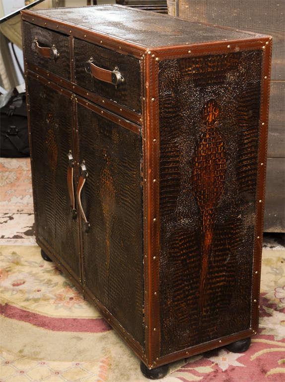 Vintage Skin Cupboard 5