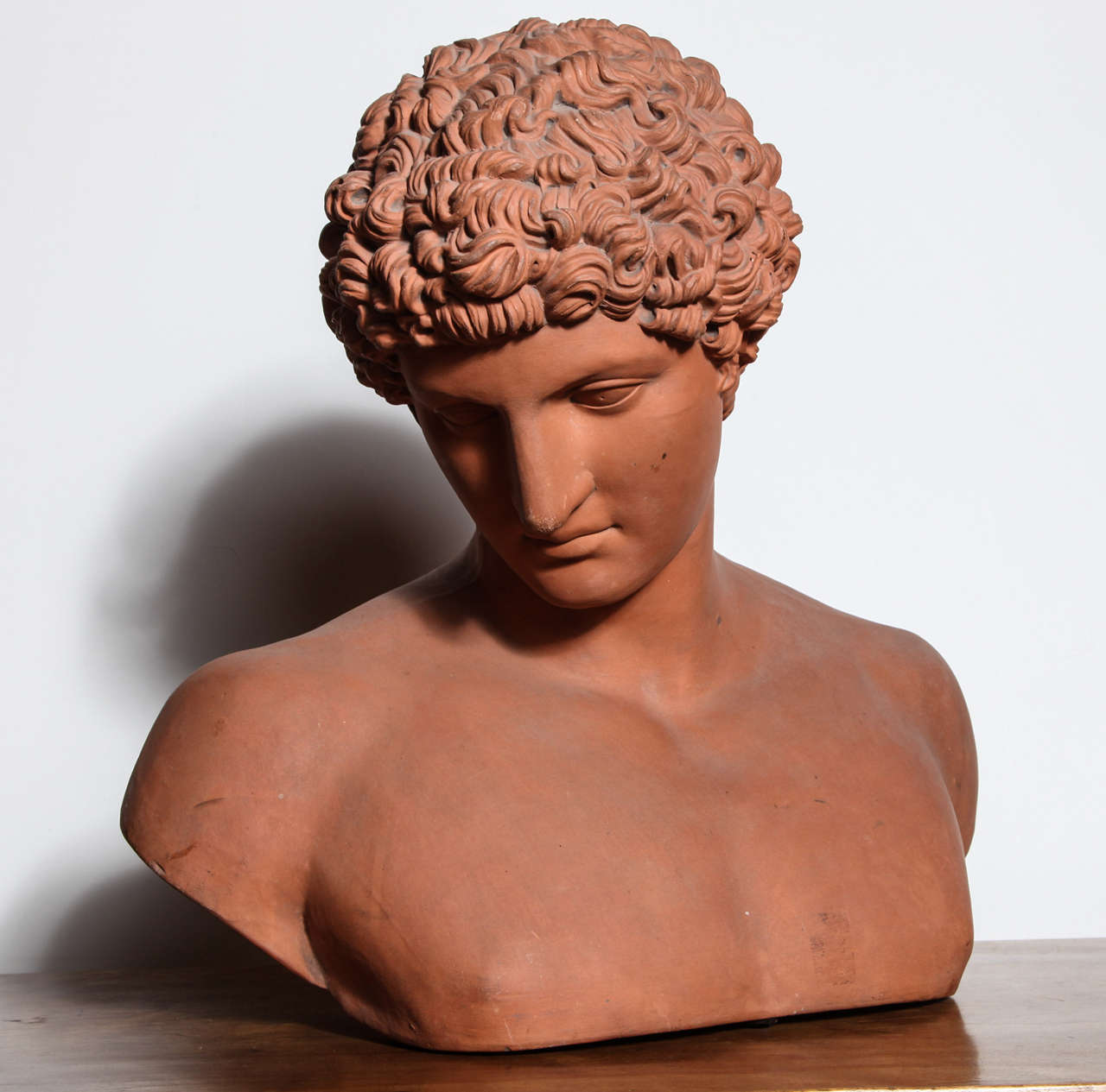 19th Century Terra Cotta Bust of Antinous 2