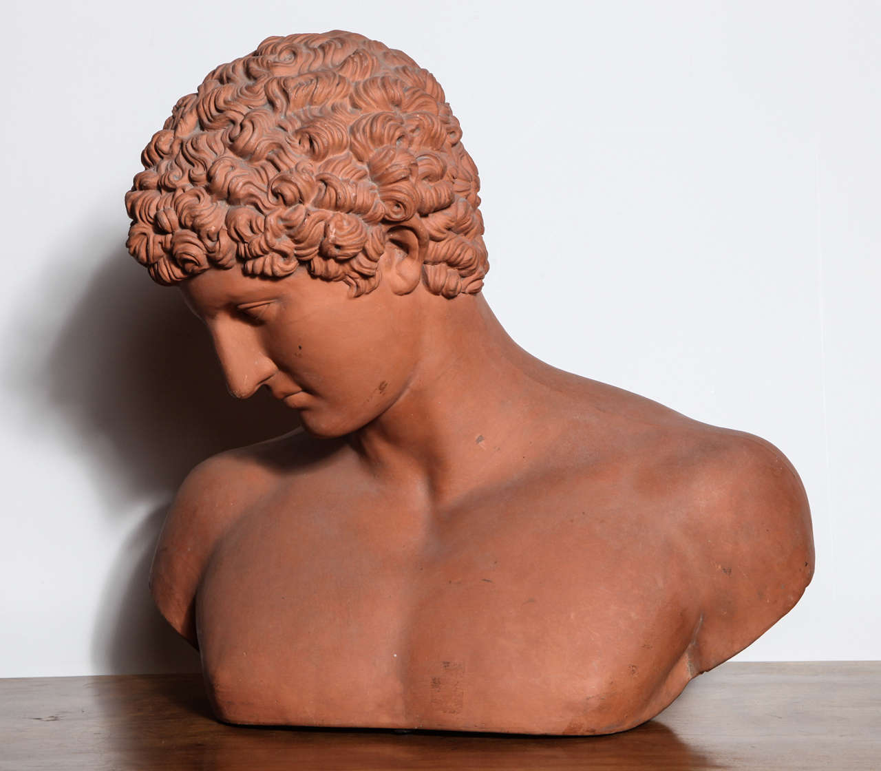 19th Century Terra Cotta Bust of Antinous 3