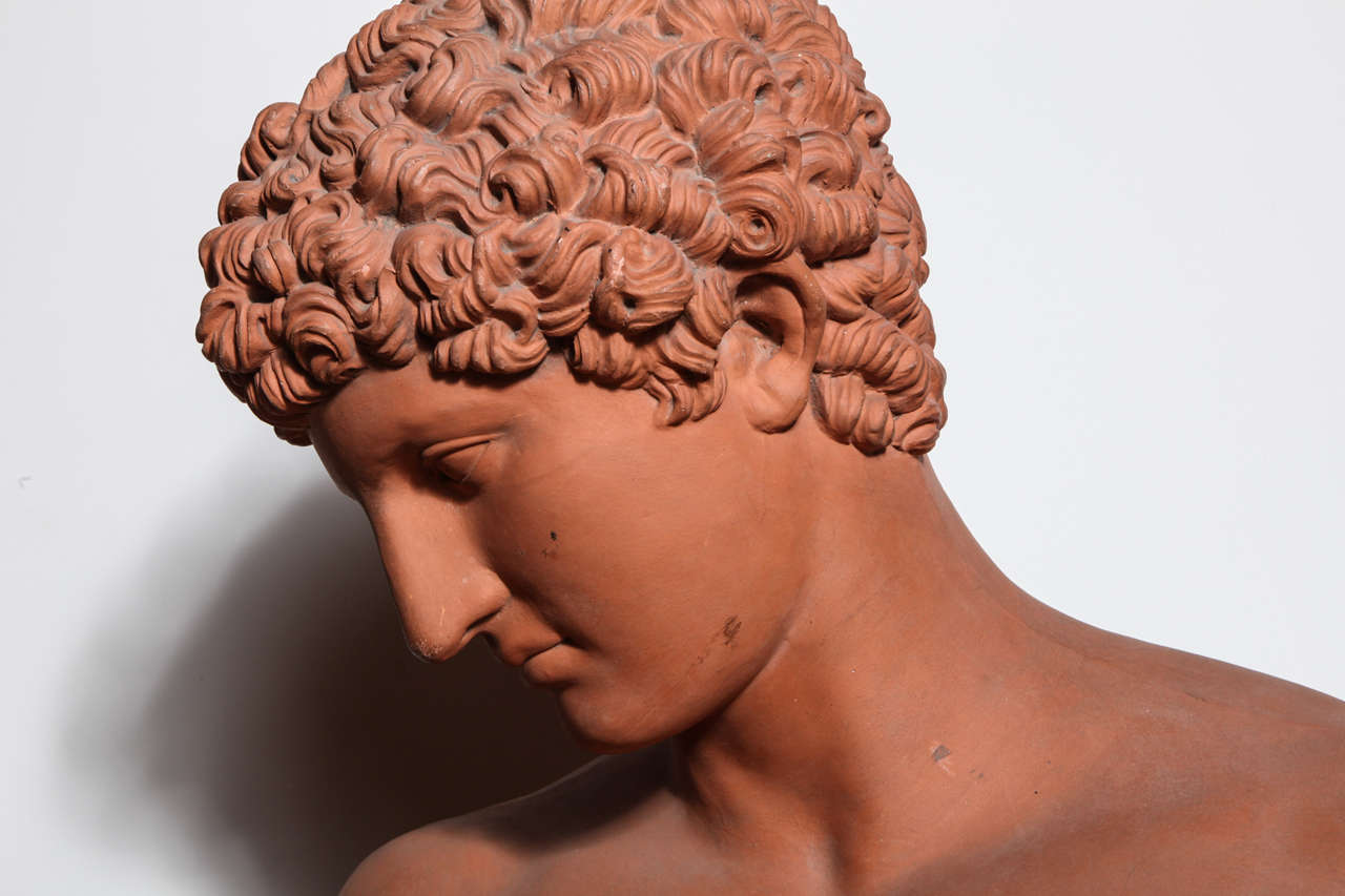 19th Century Terra Cotta Bust of Antinous 4