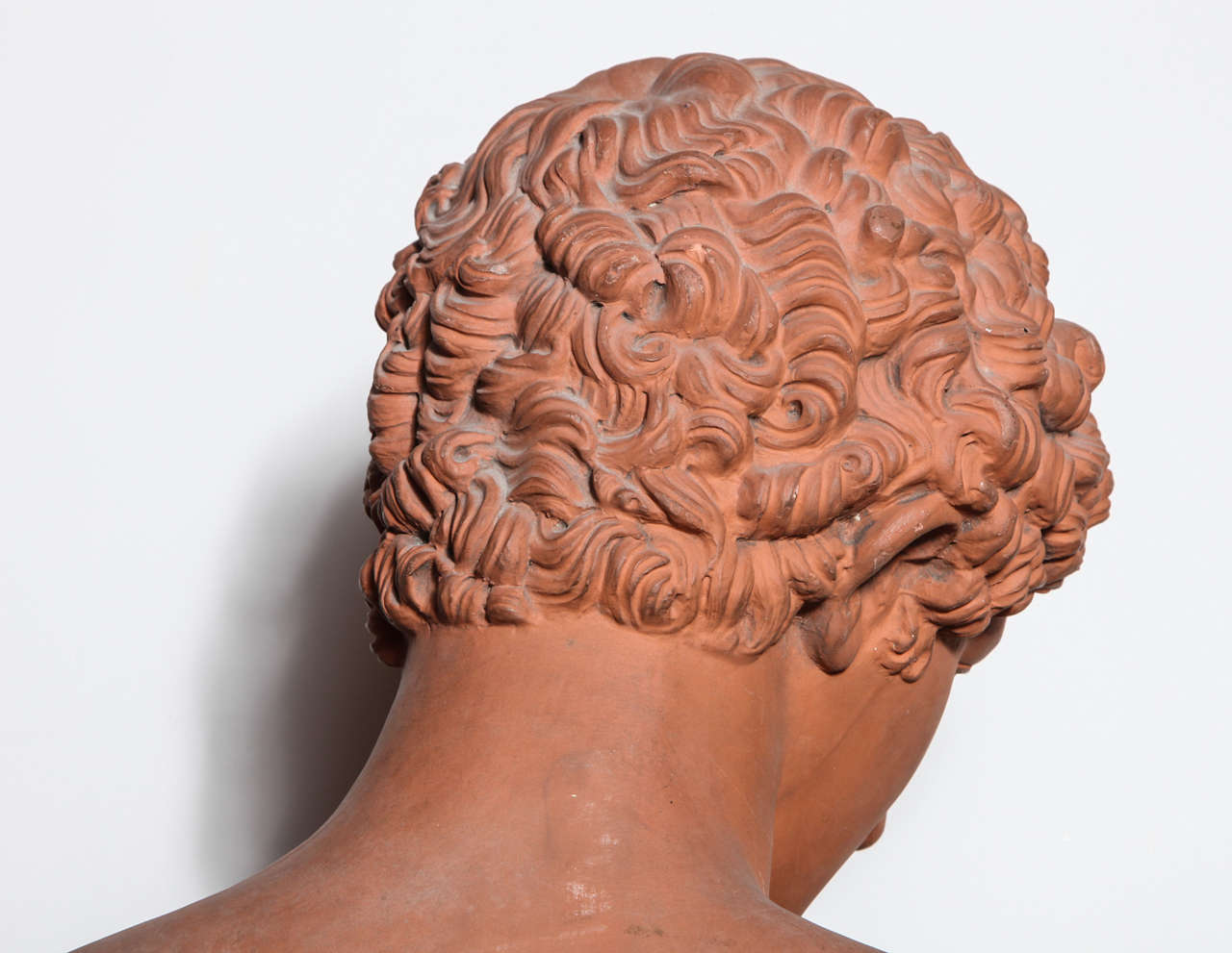 19th Century Terra Cotta Bust of Antinous 9