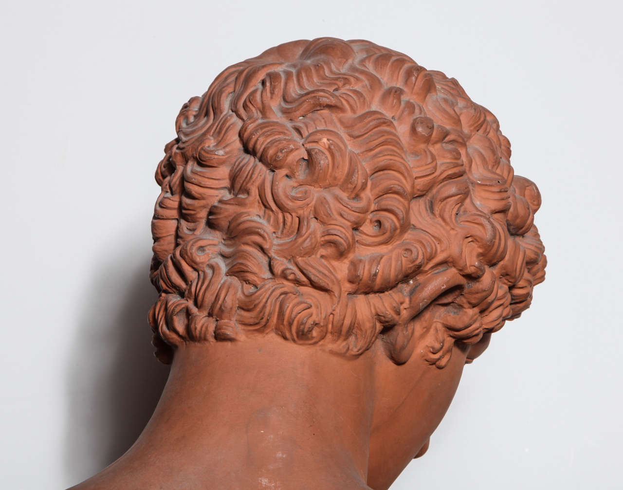 19th Century Terra Cotta Bust of Antinous 10