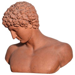 19th Century Terra Cotta Bust of Antinous