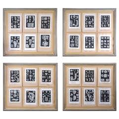 Set of 4 Framed Antique Fossil Engravings