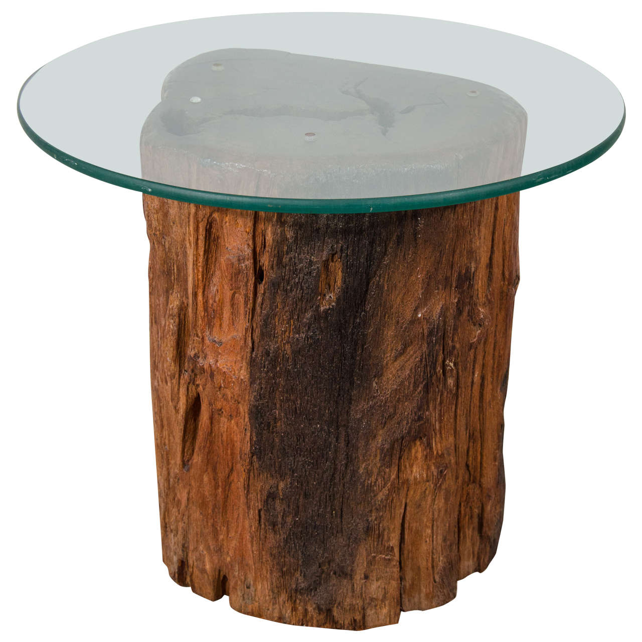Antique petrified tree trunk side table with glass top at for Wood stump end table