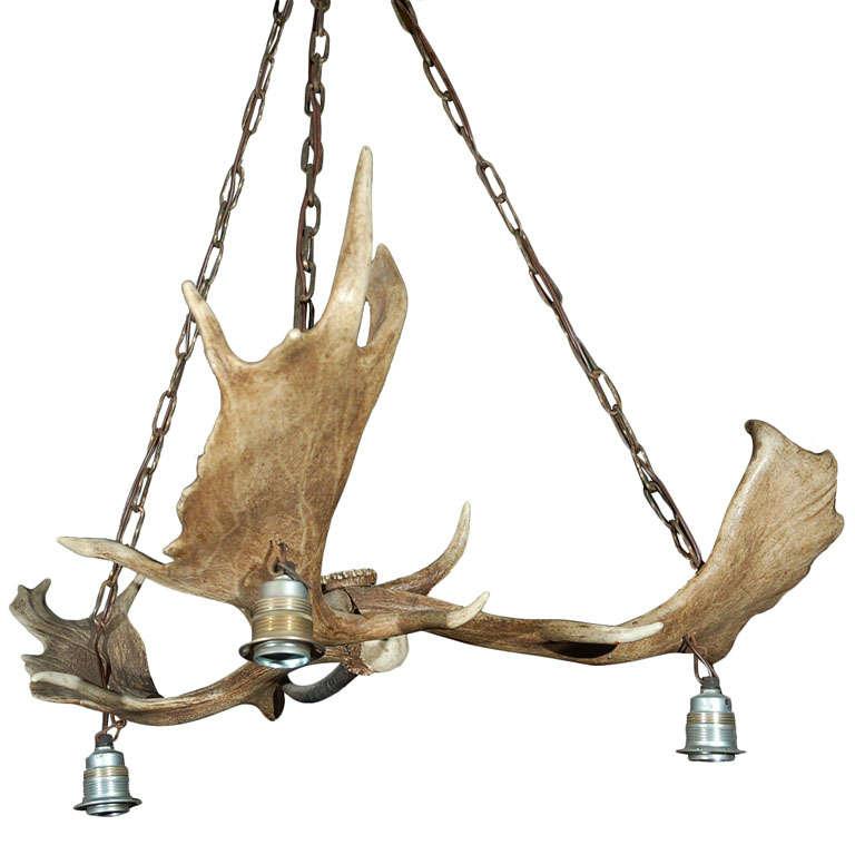 Elk Horn Three Light Chandelier