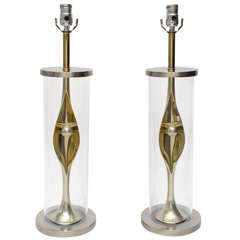 Pair of Mixed Metal and Lucite Laurel Lamps