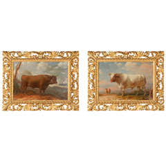 Rare 18th Century Italian Bull Paintings