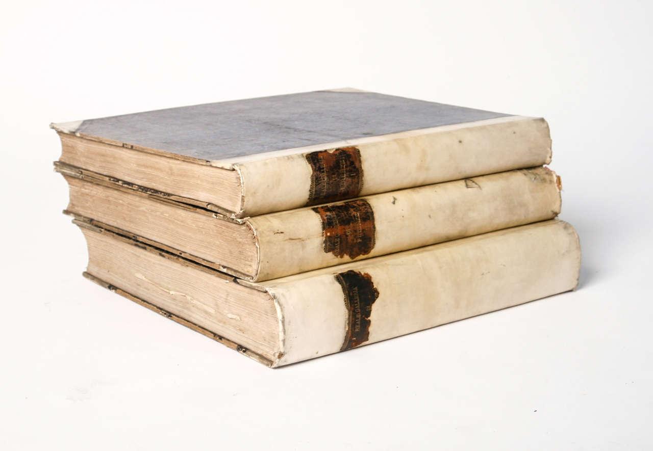 European 18th Century Large Vellum Books in a Three Volume Set For Sale