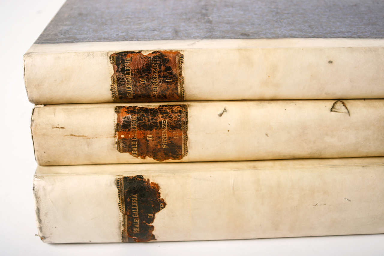 Set of 3 large volumes of Vellum Books from the 18th Century. They are very impressive in their size. The books have vellum on the front spine with a brown leather stripe.