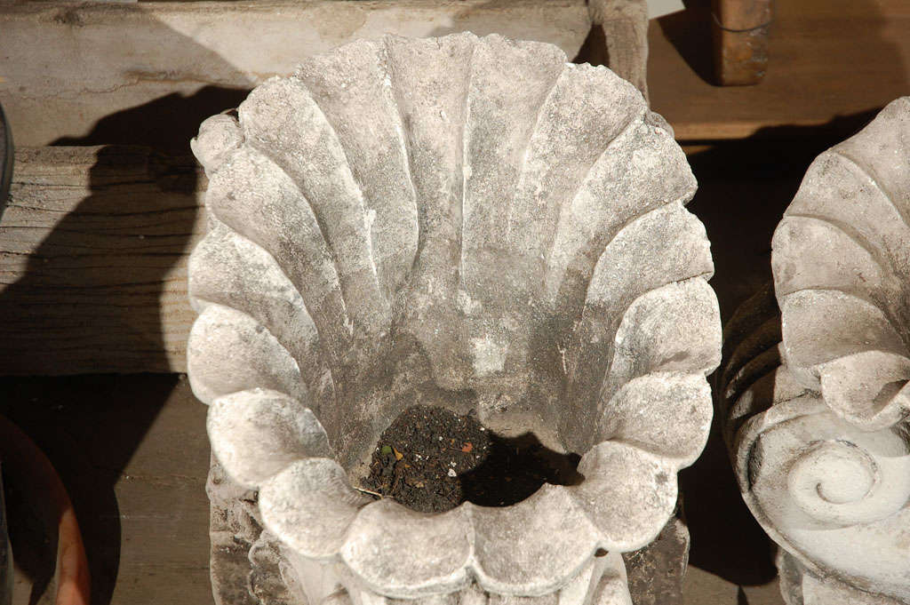 Pair of cast concrete shell shaped planter at 1stdibs - Casting concrete planters ...