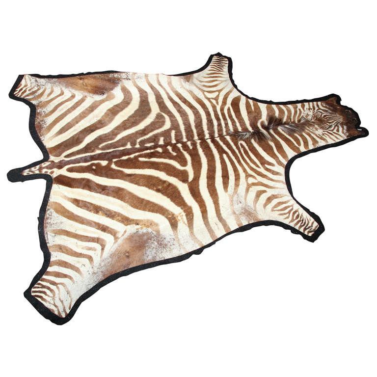 Zebra Sculpture Area Rug: Zebra Rug At 1stdibs