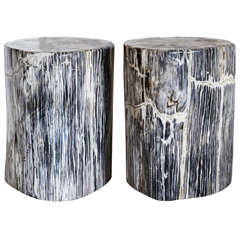 Petrified Wood Stools