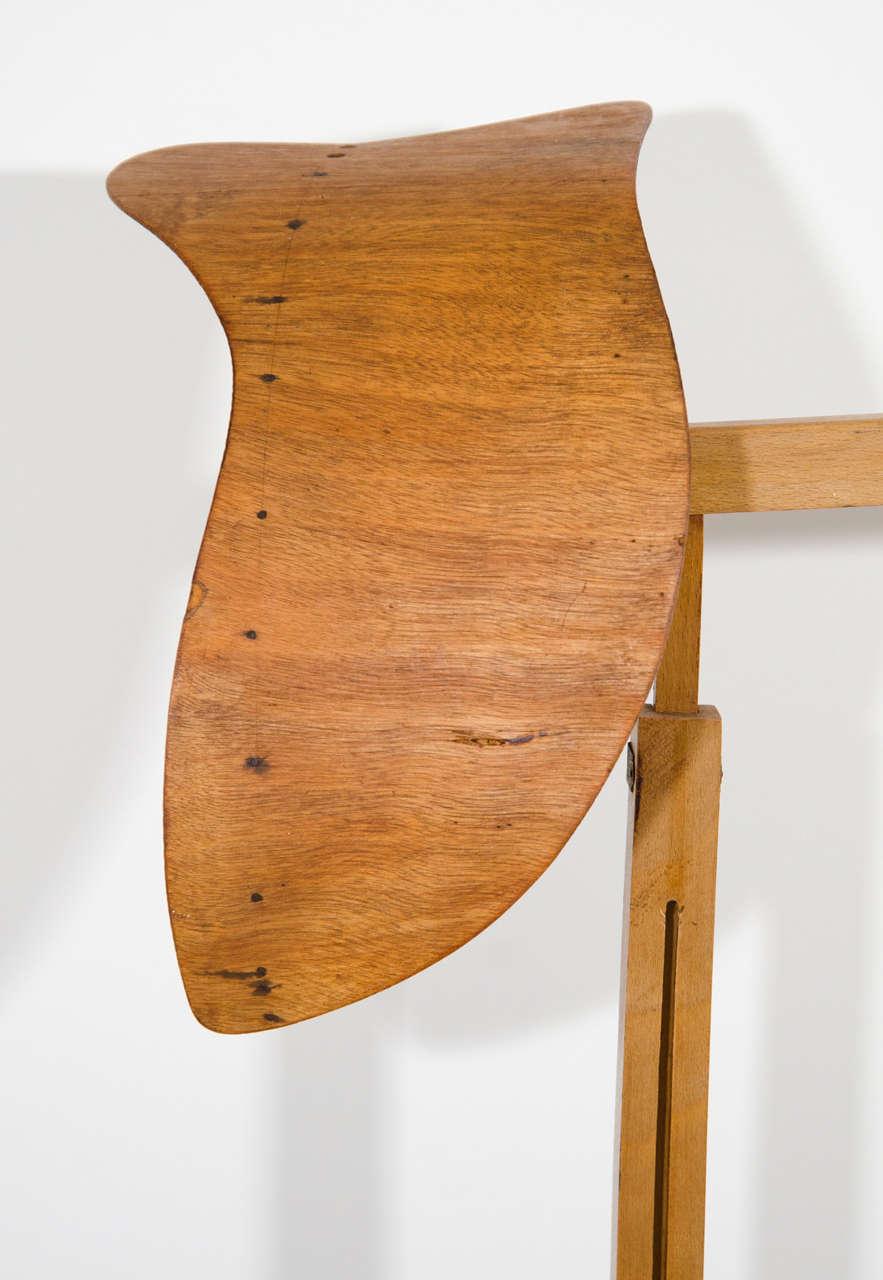 Siegel Wooden Display Form 3